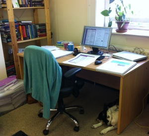 My desk - with Kayleigh on guard duty