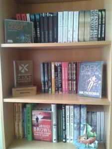 Robert Davidson's bookcase