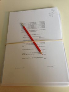 On Starlit Seas manuscript